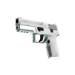 P250 | Whiteout Logo