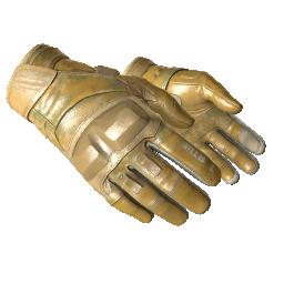 ★ Moto Gloves | Transport Logo