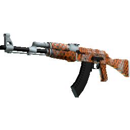 AK-47 | Safety Net